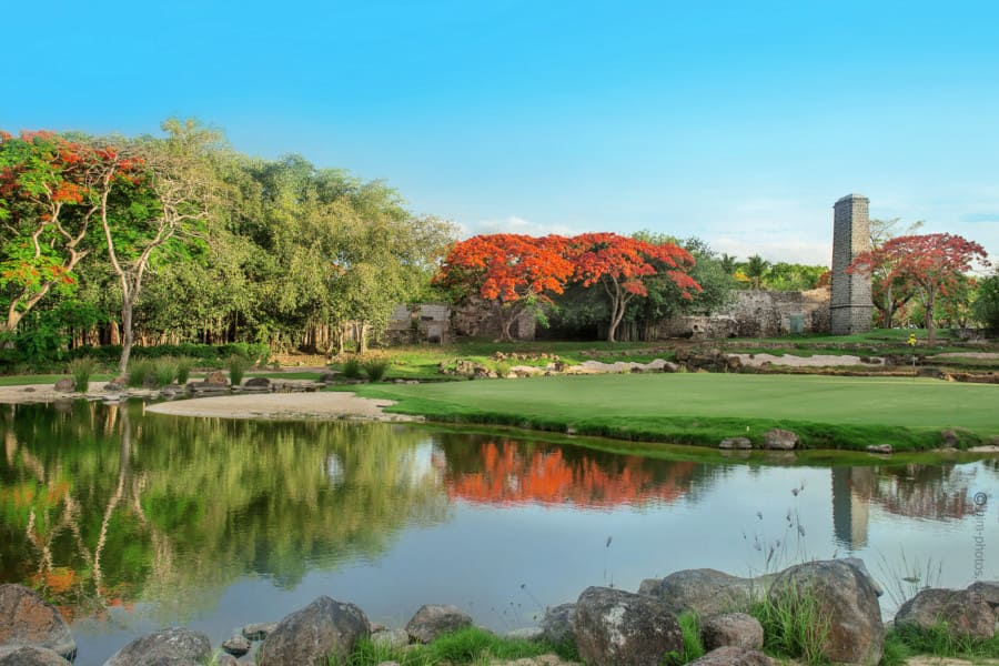 Luxury Estates Mauritius Golf